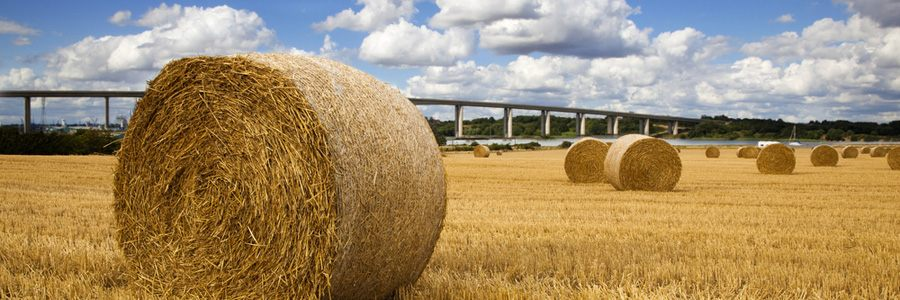 Suffolk countryside: Straw bales with river and bridge